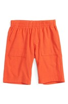 Tea Collection Toddler Boy's Knit Shorts