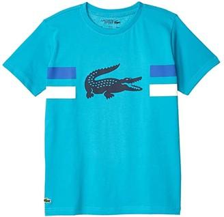 Lacoste Kids Training Big Croc Tee Shirt (Little Kids/Big Kids) (Cuba/White/Obscurity/Navy Blue) Boy's Clothing