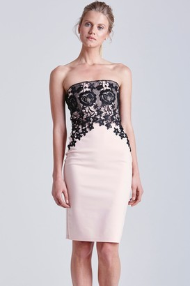 Little Mistress Blush and Black Lace Bandeau Dress