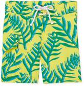 Oscar de la Renta Palm Leaves Surfer Board Shorts