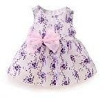 Fheaven Baby Girls Lace Flowers Embroidery Sleeveless Dress Princess Tulle Party Dress (18M, Purple)