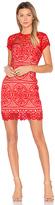 Aijek Blackjack Embroidered Mini Dress in Red. - size 2/M (also in )