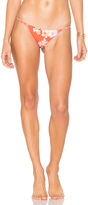 Stone Fox Swim Puka Bikini Bottom