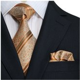 Landisun SILK Paisleys Mens SILK Tie Set: Necktie+Hanky+Cufflinks