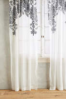 Anthropologie Fairuza Curtain
