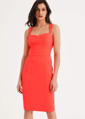 Phase Eight Vida Fitted Dress
