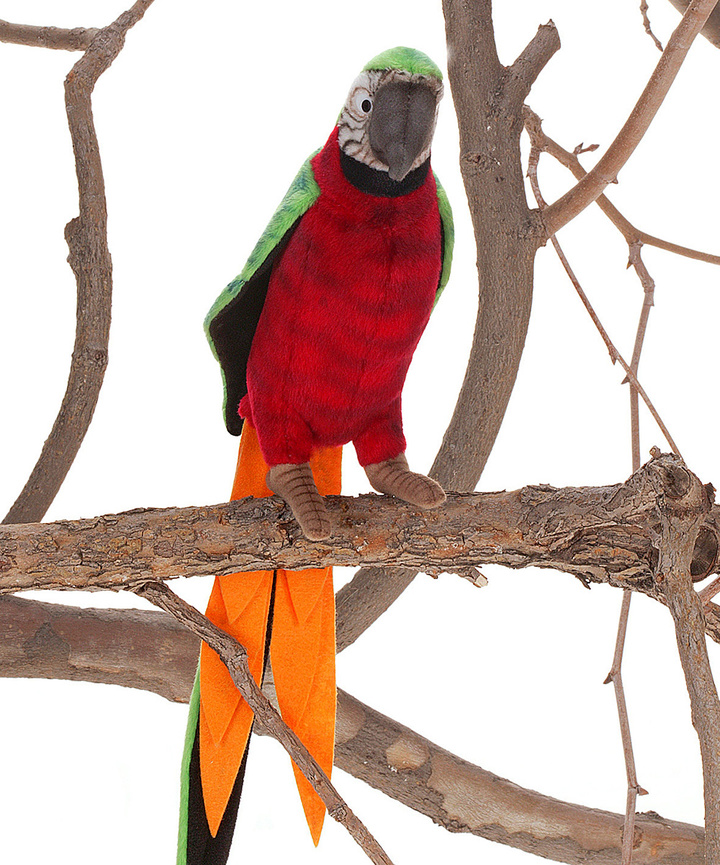 Red & Green Parrot Plush Toy