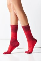 Out From Under Ombre Crew Sock