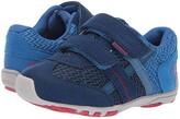 pediped Gehrig Flex (Toddler/Little Kid) (Blue/Navy) Boys Shoes
