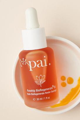 Pai Skincare Rosehip BioRegenerate Oil By in Orange Size ALL