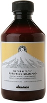 Davines Natural Tech Purifying Shampoo