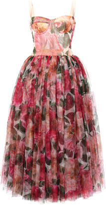 Dolce & Gabbana Camellia-Print Tulle Bustier Midi Dress