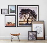 Pottery Barn Ridge Distressed Gallery Frames