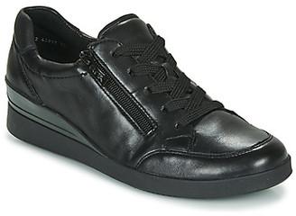 ara 43311-77 women's Shoes (Trainers) in Black