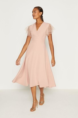 Coast Polkadot Mesh Short Sleeve Fit And Flare Dress