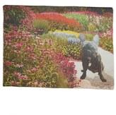 Yigal Azrouel Garden Print Modal & Cashmere Scarf