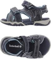 Timberland Sandals - Item 11235541