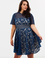 Cooper St CS CURVY Alessandra Lace Fit-And-Flare Dress