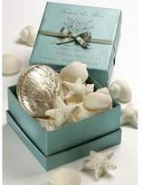 Gianna Rose Sea Shell Soap In Shell Dish