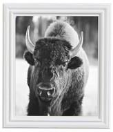 Pottery Barn Bison Framed Print by Jennifer Meyers
