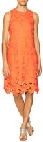 Julia Jordan Floral Lace Shift Dress