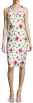 David Meister Sleeveless Floral-Embroidered Cocktail Dress, Multi Colors