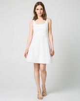 Le Château Stripe Lace Fit & Flare Dress