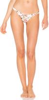 SKYE & staghorn Nirvana Basic Bikini Bottom