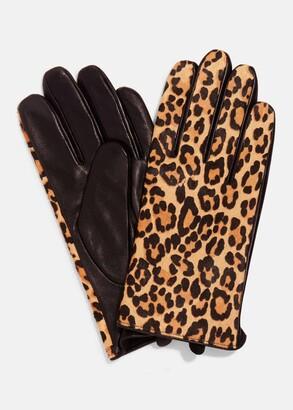 Phase Eight Liz Leopard Print Glove