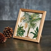 Graham and Green Framed Square Palm Print