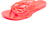 Melissa New Fly Sandals