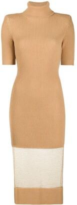 Elisabetta Franchi Roll Neck Sheer-Panel Dress