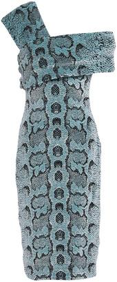 Roberto Cavalli Snake-print Velvet Dress