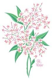 Bob Mackie Flatweave Green/Pink Rug