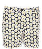 Love Moschino Daisies Print Shorts
