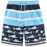 Snapper Rock Blue Swordfish UPF 50+ Elasticated Waist Board Shorts