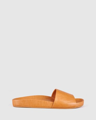 St Sana - Women's Brown Flat Sandals - Flo Slides - Size One Size, 39 at The Iconic