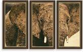 "Bed Bath & Beyond ""Elephant Triptych"" 3-Piece Framed Art"