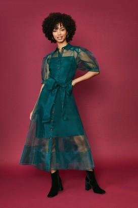 Coast Organza Puff Sleeve Dress