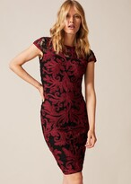Thumbnail for your product : Phase Eight Eldora Tapework Lace Dress