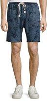 Sol Angeles Tropical Palm-Print Sweat Shorts, Indigo