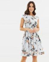 Dorothy Perkins Autumn Hues Flora Dress
