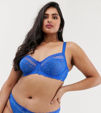 Dorina Plus Size Maureen lace mesh briefs in blue