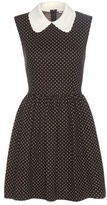 Miu Miu Cotton And Wool-blend Dress