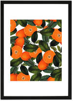 The Forbidden Orange Framed Print