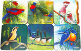 Maxwell & Williams Birds of Australia Catherine Castle Coasters Set 6 10.5cm