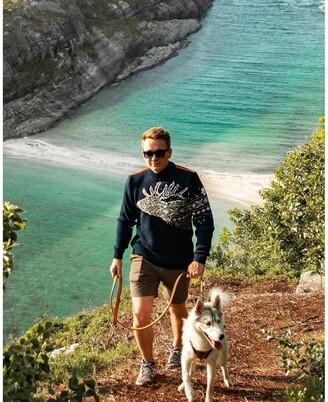 Dale of Norway Snohetta Sweater - Men's