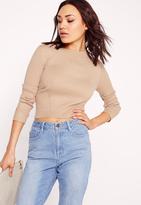 Missguided Panelled Rib Basic Ribbed Crop Sweater Camel