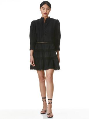 Clark Mandarin Collar Mini Dress