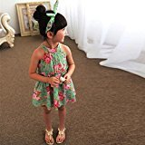 Hot Baby Dress! AMA(TM) Toddler Kids Baby Girls Floral Sleeveless Princess Party Tutu Dresses Clothes (2/3T, Green)